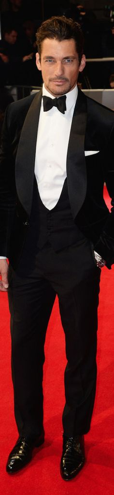 David Gandy Red Carpet For A Black Tie Event | The House of Beccaria~