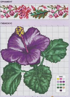 hybiscus flower and flower border cross stitch