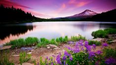 Nature Wallpapers HD Landscape Pictures | One HD Wallpaper Pictures ...