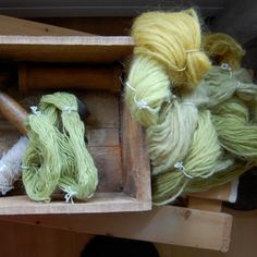 Dyeing with plants, basics. Using natural materials to dye textiles, plants mostly, is an incredibly satisfying activity. It doesn't cost much and guaranties an in...