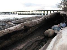 Bellingham, Washington - Squalicum Beach