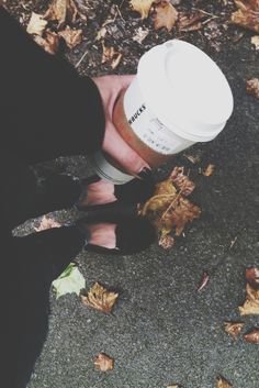 leggings, leaves, & lattes.