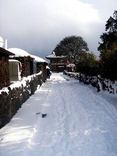 Jeju destinations during winter