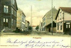 """Hordaland fylke  SARPSBORG, Pellygaden, kolorert gateparti, sjeldent, med bl.a. """"Auktionslokale"""" og kafe Utg L. Wang-Henriksen postgått 1901"""