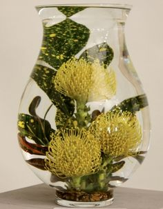 Underwater Design A contemporary style in which all or part of the design must be under visible water. Creative Flower Arrangements, Floral Arrangements, Ikebana, Flower Show, Flower Art, Underwater Flowers, Corporate Flowers, Flora Design, Garden Club
