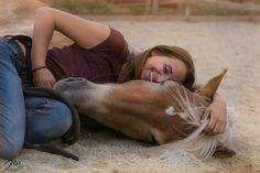 Pferdefreundschaften, Vertrauenpferd, Haflinger Cow, Animals, Animales, Animaux, Cattle, Animal, Animais