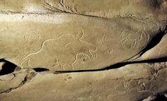 Préhistoire en Dordogne : il y a 15 ans, la découverte de la fabuleuse grotte de Cussac - SudOuest.fr