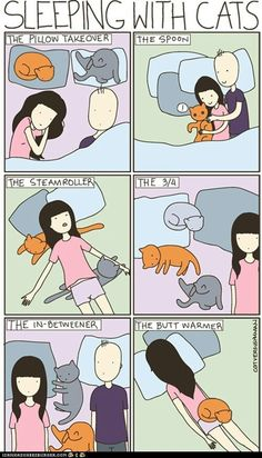 Lol my cats all either pile on top of me or take up all of the bed and I sleep on the couch because all that fur is suffocating..Please, Repin  like.