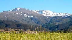 Wanderung mit El Torito in der Sierra Nevada