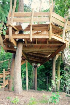 treelounge boomhut