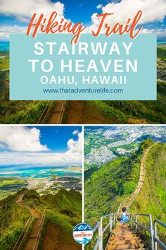 """Moanalua Valley Middle Ridge trail to Haiku Stairs or Stairway to Heaven by That Adventure Life. Directions to Moanalua Valley Middle Ridge, the legal """"back way"""" to get to Haiku Stairs (also called Stairway to Heaven) in Oahu, Hawaii. A wanderlust travellers and hikers paradise view of dreams. A bucket list adventure to include in your list of things to do while in Oahu. Grab your hiking gear, let's go! For all the details, this blog is it! Read now! Adventure Bucket List, Life Is An Adventure, Adventure Travel, Hawaii Hikes, Oahu Hawaii, Hiking Gear, Hiking Trails, Valley Park, Us Travel Destinations"""