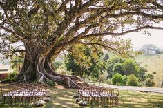 Rustic Ceremony & Bentwood Chairs