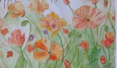 Poppy's  water colour