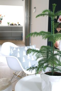 &SUUS: Last minute Happy Xmas | ensuus.blogspot.nl | Living Room | Pine Tree |