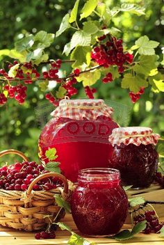 Time to harvest red currants - or to buy them - and make jam or jelly Country Life, Country Living, Country Jam, Country Women, Currant Jelly, Vie Simple, Down On The Farm, Fruits And Veggies, Farm Life