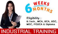We provide six weeks industrial training services.
