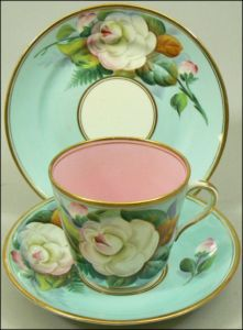 Royal Worcester Teacup!
