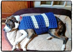 Your pup will be stylish and warm in the All Squared Away Dog Coat. It works up quickly in chunky yarn and a H hook. With a 3 button attachment, it is easy to put on and take off. Dog Sweater Pattern, Crochet Dog Sweater, Lion Brand Hometown Usa, Pet Organization, Dog Crafts, Pattern Library, Dog Sweaters, Chunky Yarn, Pullover