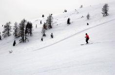 Learn to Ski  http://www.storeboard.com/skiadesignsltd