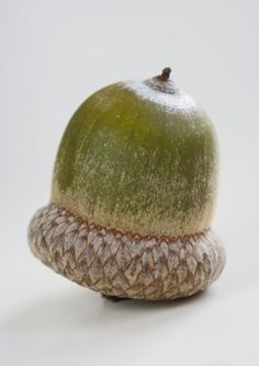 ☆ Acorn is just the oak nut, bearing a single seed enclosed in a tough and leathery shell. It is synonymous to the English proverb, 'Great oaks from little acorns grow'. Acorn represents patience, hard work and labor that will ultimately fetch success. People believe that good luck will follow if one keeps acorn with himself.。☆