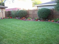 Small Backyard Makeovers | Will this look good in such a small yard? Also any idea what's ised to ...