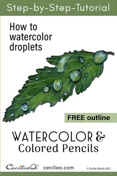 All it takes to watercolor water drops is painting highlights and shadows in the right places. Step-by-step tutorial with free outline. Watercolor Water, Watercolor Tips, Green Watercolor, Watercolour Tutorials, Watercolor Pencils, Watercolor Flowers, Watercolors, Watercolor Beginner, Watercolor Paintings For Beginners