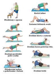 Cvičení na záda