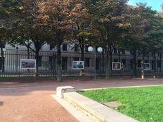 """Faites confiance à la Mairie de Lyon — l'exposition de photos """"Lyon Insolite"""" en vaut la peine ! Rendez-vous sur la place Antonin Poncet. ONLY LYON"""