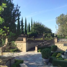 THE GARDEN HALLS - Mark D. Sikes: Chic People, Glamorous  Places, Stylish Things/Italian Cypress + pruning