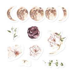 Watercolor Flower stickers, Celestial Moon cycle Bullet Journal, Planner stickers set, Water Bottle MacBook Laptop Floral Stickers - Our Stickers ! Bullet Journal Kawaii, Bullet Journal Vintage, Bullet Journals, Planner Stickers, Journal Stickers, Tumblr Stickers, Cute Stickers, Free Printable Stickers, Laptop Stickers