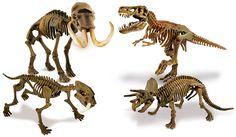 Ciencia y Juego - Dino colección (Clementoni 92773): Amazon.es: Juguetes y juegos
