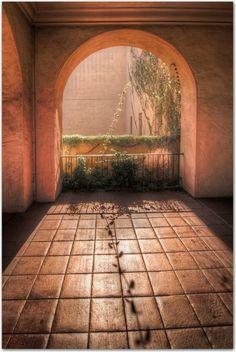 Vine and Arch, Balboa Park, San Diego, California
