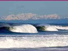 Westport, WA - picnicking, scuba diving, kite flying, horseback riding, clam digging, beachcombing