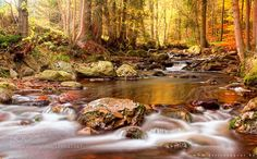 River of colours 2 by bartceuppens. Please Like http://fb.me/go4photos and Follow @go4fotos Thank You. :-)