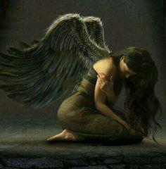 Sad Wings of Destiny...
