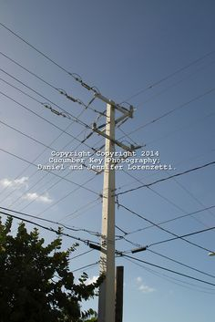 Power lines in Key West, Florida, make an interesting grid against the blue sky.