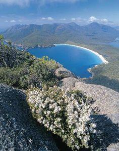Wineglass Bay #Tasmania #Australia  http://www.tripadvisor.com.au/ShowForum-g255096-i887-Tasmania.html