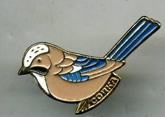 old original bird metal Eurasian jay Garrulus glandarius pin badge