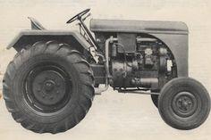 MaciBison1955