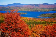 maine foliage.  I would love to know where this is. It looks like Belgrade Lakes.
