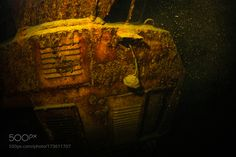 Crane underwater by sergemi #nature #photooftheday #amazing #picoftheday #sea #underwater