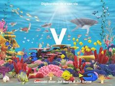 Paradise Stock Photos, Royalty Free Paradise Images - Page 2 The Ocean, Graphic Illustration, Graphic Art, Beneath The Sea, Rainbow Fish, Letter V, Learning The Alphabet, Mammals, Amazing Photography