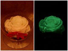 green flAVATAR Preserved Rose