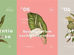 Plants (Pt.02) by Ben Biondo