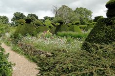 Giant whimsical topiaries set in drifts of wild flowers   Great Dixter, photo credit Adam Woodruff