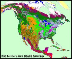 Image of a map showing where the different biomes of the world are image of a map showing where the different biomes of the world are located each biome is linked to a page with more detailed information about th gumiabroncs Images