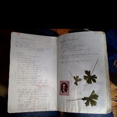 Poems copied, diary pages
