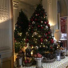 👀🎄🇪🇸 #drink 🥂 @santomaurohotel #madrid #beauty #art #igersmadrid #nofilter #picoftheday #hotel #luxury #trip #travel Beauty Art, Madrid, Christmas Tree, Luxury, Drinks, Holiday Decor, Instagram Posts, Travel, Home Decor