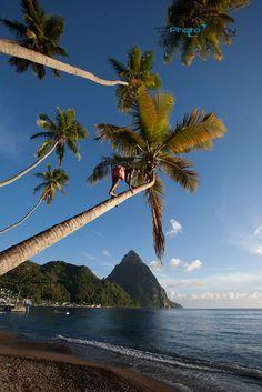 Virgin islands department of insurance