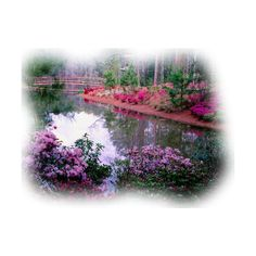 TUBES PAYSAGES ❤ liked on Polyvore featuring tubes, backgrounds, landscape, art, garden and fillers
